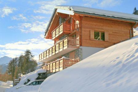 Аренда жилья Thyon : Chalet Dent Blanche зима