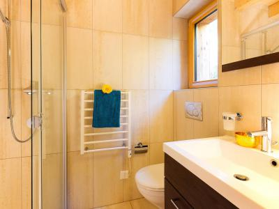 Rent in ski resort Chalet Etoile des 4 Vallées - Thyon - Shower room