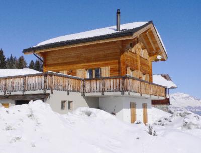 Location au ski Chalet Krokus - Thyon - Extérieur hiver