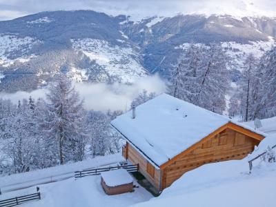 Location au ski Chalet Marguerite - Thyon - Extérieur hiver
