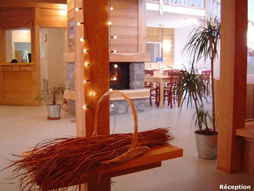 Location au ski Les Balcons Du Soleil - Val d'Allos - Réception