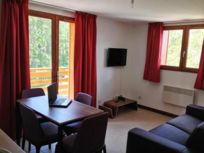Location au ski Residence Adonis Valberg - Valberg / Beuil - Coin séjour