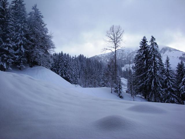 Location au ski Appartement 2 pièces 5 personnes (C26) - Résidence le Cheval Blanc - Valmorel