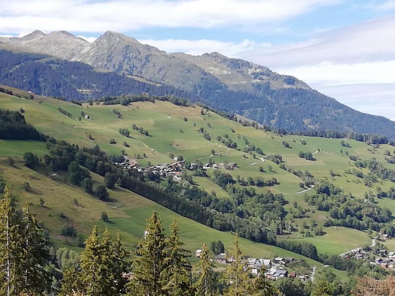 Location au ski Studio 3 personnes (016) - Résidence le Cheval Noir - Valmorel