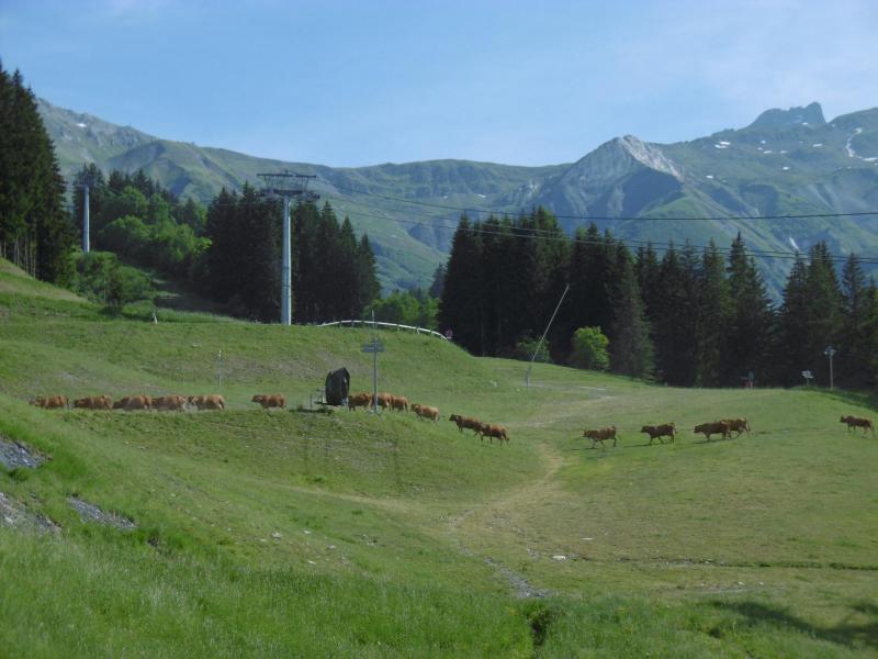 Location au ski Résidence le Pierrafort - Valmorel