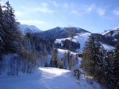 Location au ski Appartement 2 pièces 5 personnes (C63) - Résidence le Cheval Blanc - Valmorel