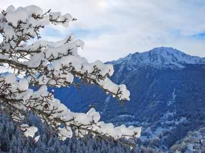 Rent in ski resort Chalet CNY01 - Veysonnaz - Winter outside
